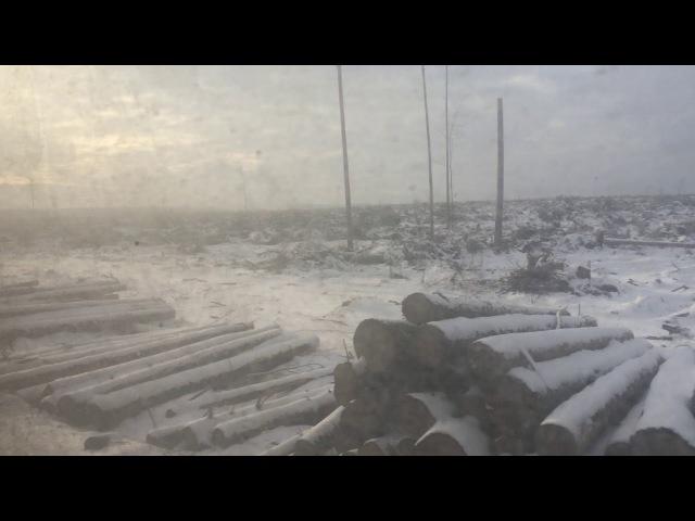 Последствия урагана в РБ в 2016 году