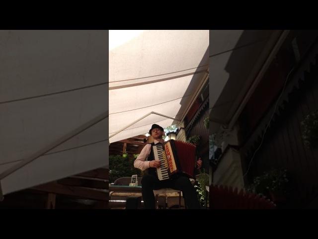 АКОРДЕОНІСТ ВАСИЛЬ ГНАТЧУК(Київ)-CHAMPS ELYSEES(Live)(Елісейські поля)