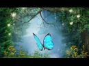 Peaceful Music Relaxing Music Instrumental Music Enchanted Forest by Tim Janis