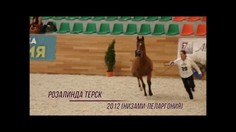 Розалинда Терск