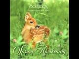 Spring Awakening - Dan Gibson's Solitudes Full Album