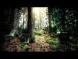 Wintersun - Awaken From The Dark Slumber (Spring) Official Lyric Video
