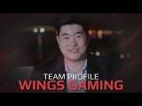 Team Profile Wings, SL i-League StarSeries Season 3 Finals (RU Subs)