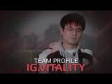 Team Profile IG.Vitality, SL i-League StarSeries Season 3 Finals (RU Subs)