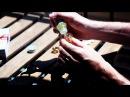 The Scandalist и никотиновая капсула RUVAPES - просто, удобно, законно