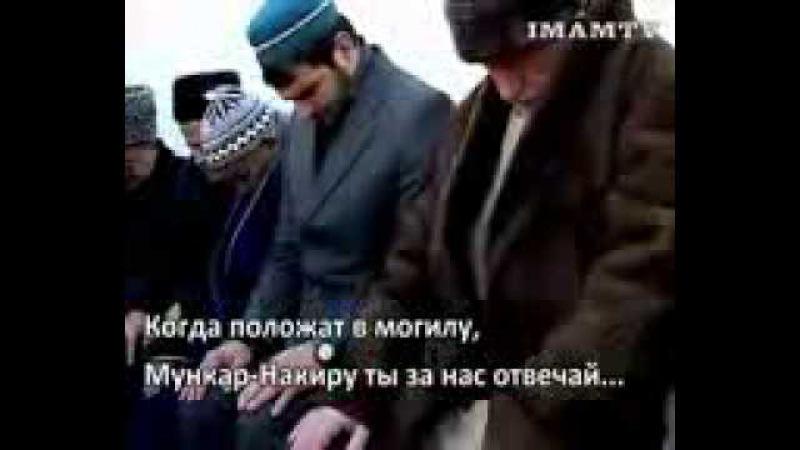 Куфр Возле могилы Махмуд афанди