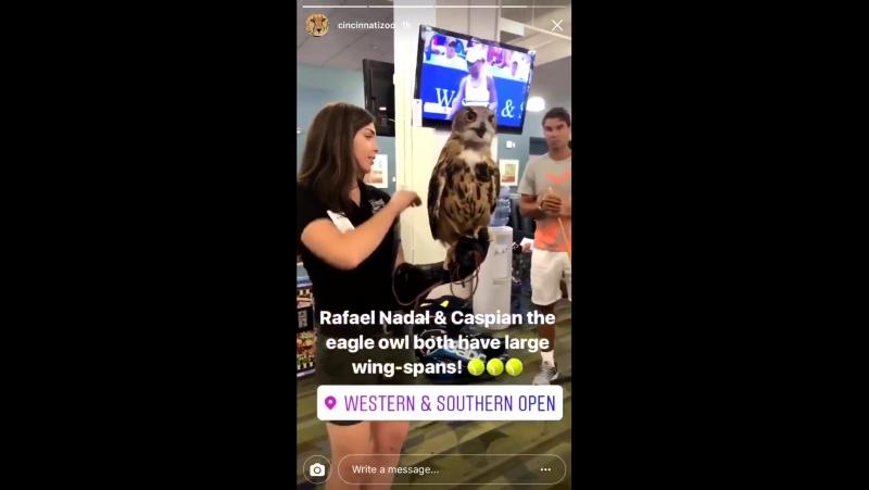 Nadal and Cincinnati zoo Rafael Nadal » Рафаэль Надаль