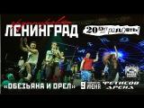 Ленинград feat. Eva Star - Обезьяна и Орел (Live, Владивосток, 09.06.2017)