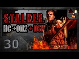 S.T.A.L.K.E.R. Народная солянка ОП-2 DSH мод #30. Огненный смерч.