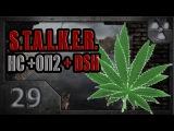 S.T.A.L.K.E.R. Народная солянка ОП-2 DSH мод #29. Меченый из наркокартеля.