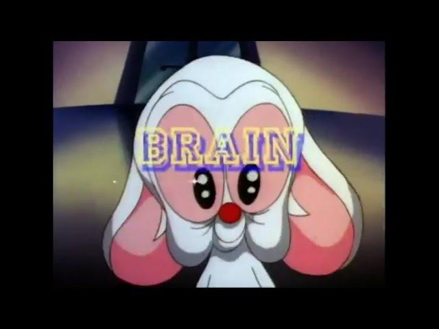 Pinky and the Brain (TV Series 1995–1998) Opening intro Theme 【HD】 CC Subtitles (Lyrics)