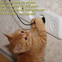 Анкета Оксана Ситькова