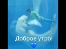 Дельфины и русалки.
