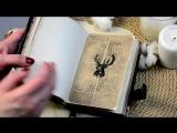 Видео обзор дневника