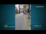 «Елден хабар». Алматы қаласының № 104 мектебінің оқушылары көліктердің ортасымен жүруге мәжбүр