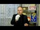 Дмитрий Руденский. Подсолнухи цветы солнца! 08.09.2017