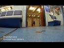 Смешной поезд от Каширской до Варшавской Иной взгляд
