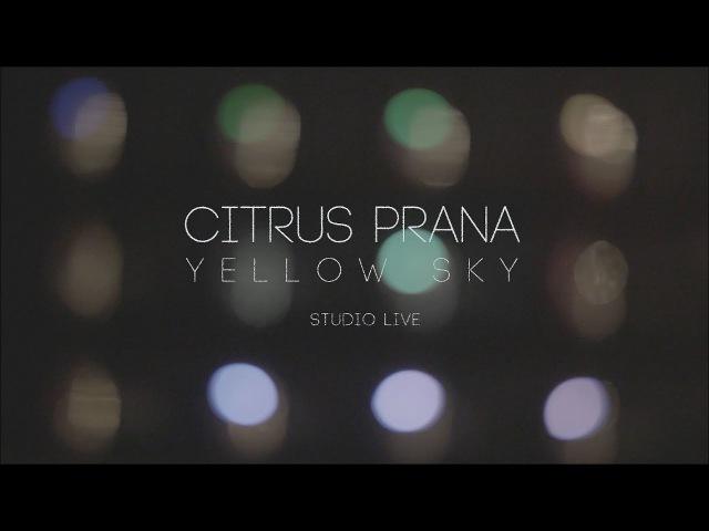 Citrus Prana Yellow Sky Studio Live
