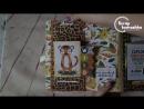 обзор альбома -Джунгли - Echo Park - Jungle Safari