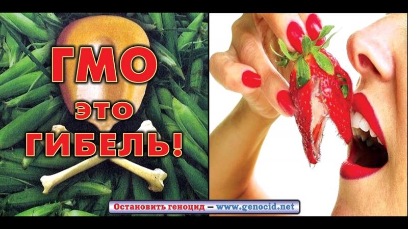 ГМО Мир согласно Монсанто World According to Monsanto RUS