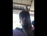 Kamal Shekh - Live