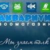 """Зоомагазины """"Аквариум"""" и """"Питомцы""""  Чита"""
