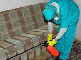 Уничтожение тараканов в квартире специализированные службы в Москве, Московской области