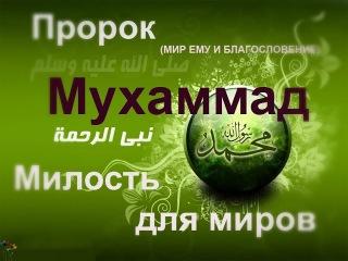 О любви к Пророку (ﷺ ) его семьи и сподвижников.Шуайб Абу Марьям