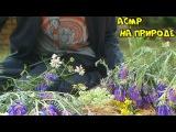 ?АСМР/ ASMR - РОЛЕВАЯ ИГРА ПРОДАВЕЦ ЦВЕТОВ НА ПРИРОДЕ флорист/Role play SELLER OF FLOWERS ON NATURE