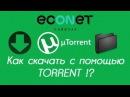 Как БЫСТРО скачать видео, музыку с помощью TORRENT торента! - econet
