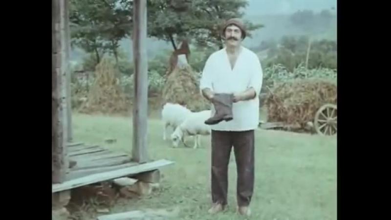 Ретивый поросенок. 1979. (СССР. Грузия. фильм-комедия, краткометражка)