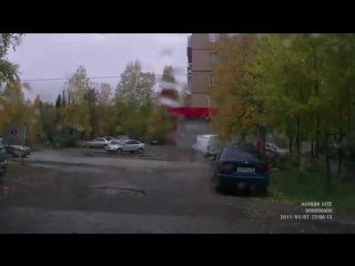 Лось на улицах Сосногорска.