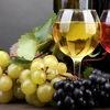 Винодел 34 (все для виноделов и пивоваров)