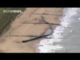 Как в Сочи на пляже в Британии найдены норвежские трубы