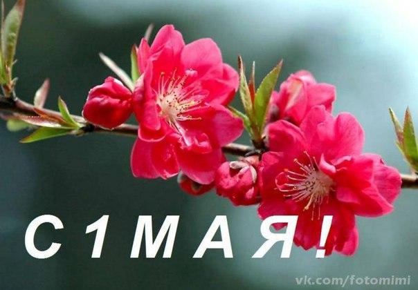 1 Мая!