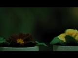 Жених для дурочки. 2 часть (2017) Мелодрама @ Русские сериалы (1)