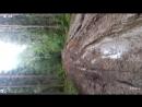 поездка на кишемское озеро лето