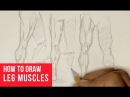 How To Draw Leg Muscles