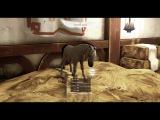Alicia Online / Breeding / My horses /