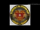 Mystic Matt &amp Anthill Mob - Enchanted Rhythm