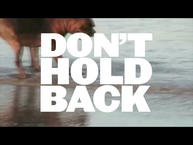 Don't Hold Back (Jeep Ad x Disobedient Dog)