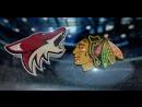 Чикаго - Аризона 6-3. 24.02.2017. Обзор матча НХЛ