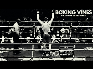 BOXING_VINES ( by Vital ) (Boxing Vines) l