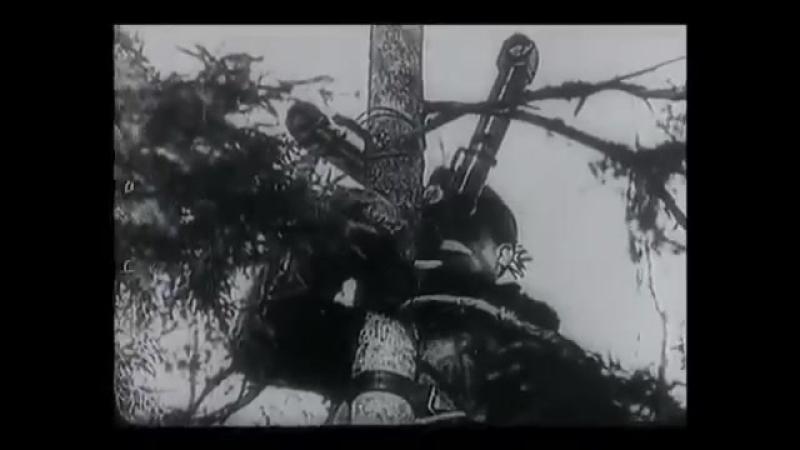 Крупнейшее сражение мира - Взятие Берлина. 'Жители города сходили с ума от увиденного'. 1945 г.
