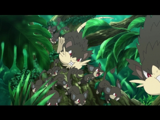 FRT Sora Pokemon the series Sun & Moon - Season 20 - Episode 09 1080p DUB