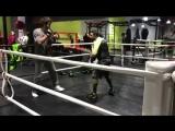 Боксерская тренировка Забита Магомедшарипова в Москве