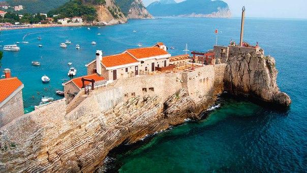 туры в черногорию из москвы горящие случаи партеногенеза людей