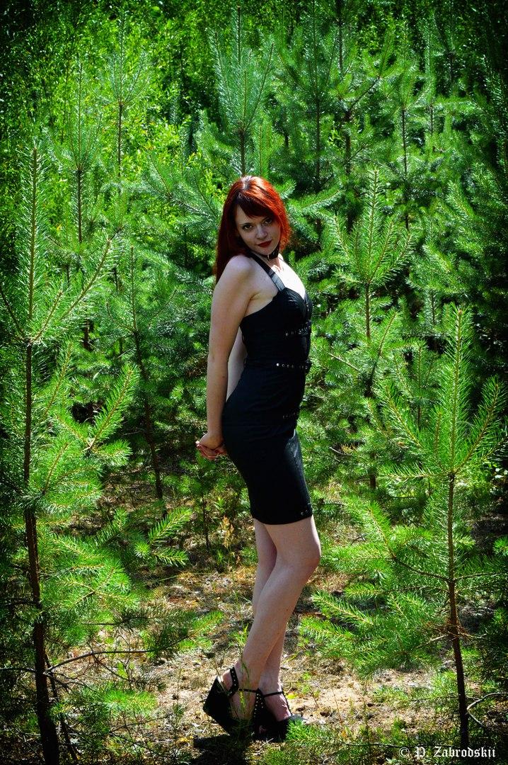 Dark Elf, Minsk - photo №2