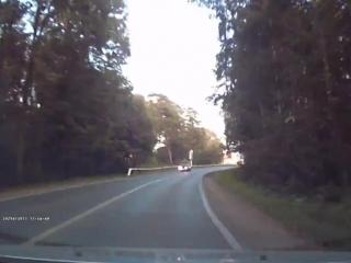 Около Нижнекамска сняли на видео наезд на лося.
