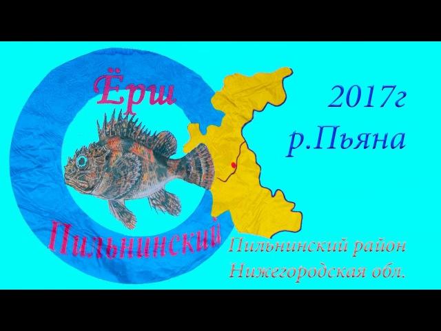 🐟Пильнинский Ёрш 2017 🐠🐡